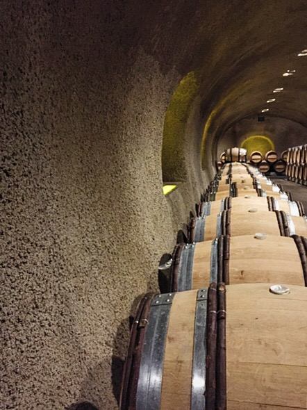 The caves house about 2,500 French oak barrels. It's tradition to stain them with cab.